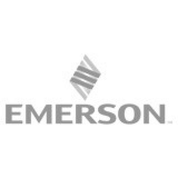 emerson_lodz